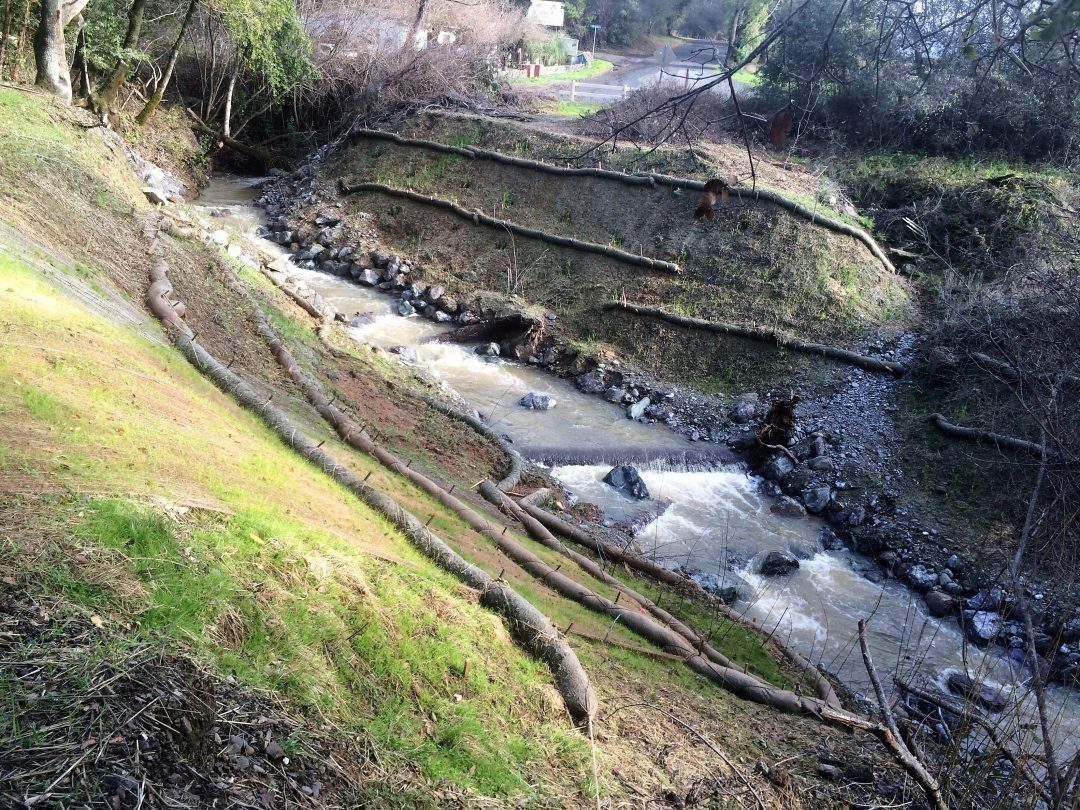 Denmark Creek Fish Barrier Removal and Riparian Habitat Enhancement