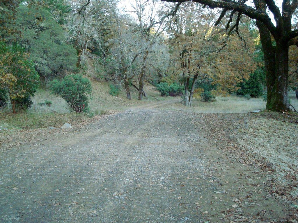 road-shot-2